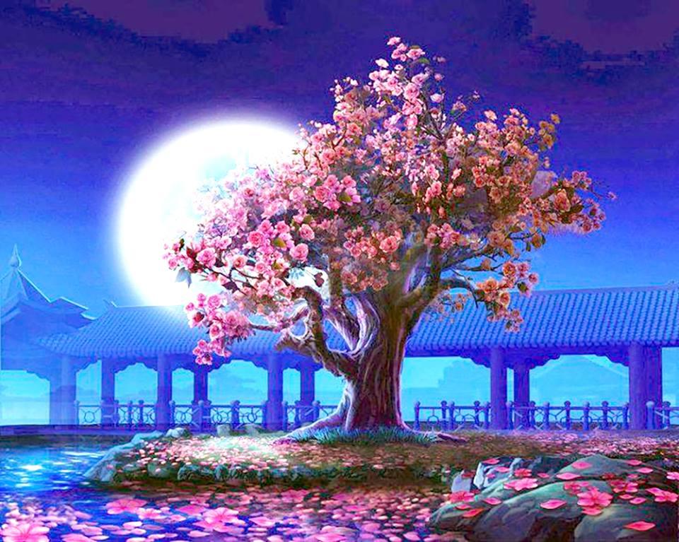 天使能量屋_開花的樹