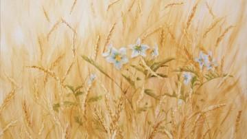 wheat-fields-elisabet-depenoux